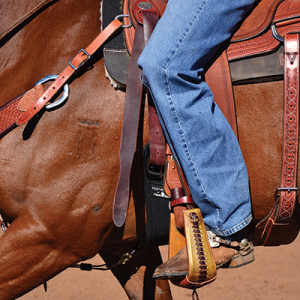 20% off all leather tack