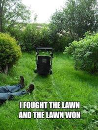 lawn_won