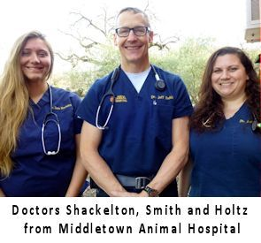 Vets from Middletown Animal Hospital