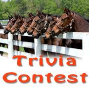 trivia_contest