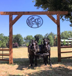 team of draft horses under a sign