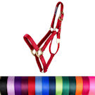 20% Off All Halters and Leads