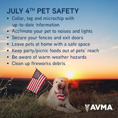 pet safety for the Fourth